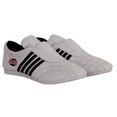 Обувь для тхеквондо Jabb JE-3404 белый р40