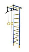 ДСК ''Формула здоровья'' ''Уралец-1А'' цвет синий-желтый кольца, канат, веревочная лестница Уралец-1